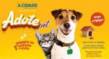 adote_pet_18010929_740626182778379_4693647805393192550_n
