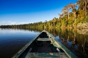 Amazonia - baixa