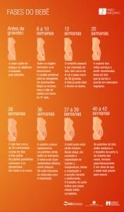 fases do bebe